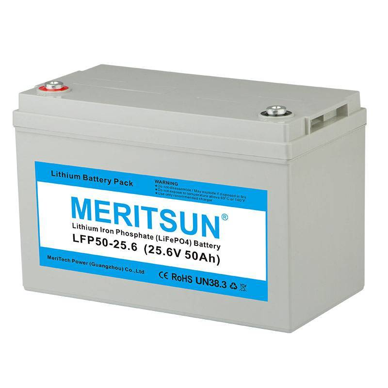 Wholesale lifepo4 polymer lifepo4 battery MERITSUN Brand