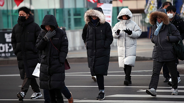 New Year ushered in a strong cold wave