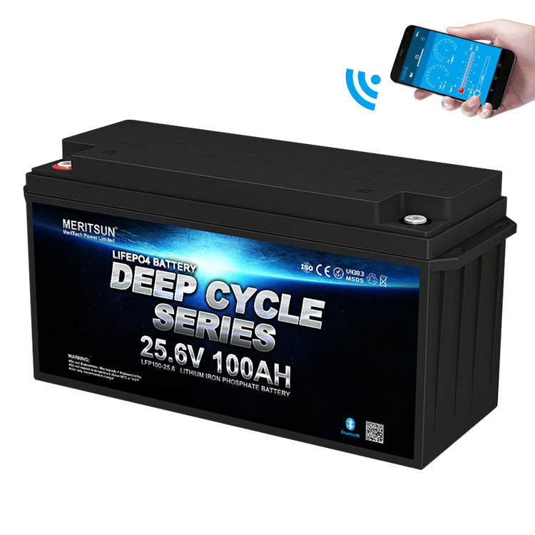 Li-ion Lifepo4 Battery Pack 24v 100ah Lithium Battery Phosphate Battery cell With Bluetooth