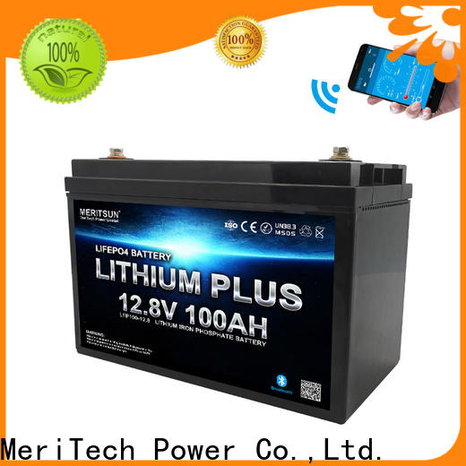 MERITSUN lithium battery with bluetooth factory for boat