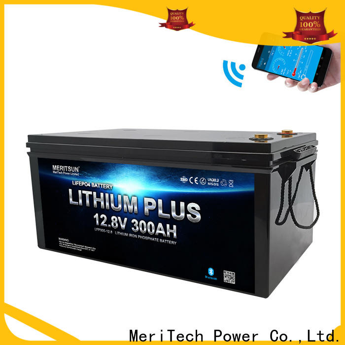 MERITSUN latest lithium battery with bluetooth factory for boat