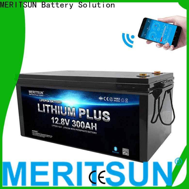 MERITSUN top bluetooth lithium battery suppliers for boat