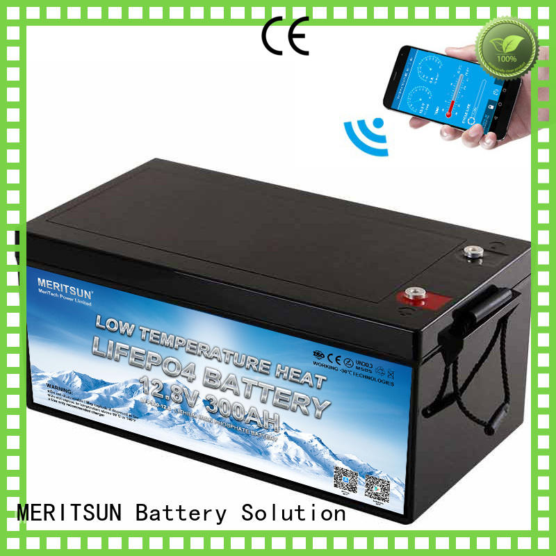 MERITSUN top low temperature li-ion battery factory for house