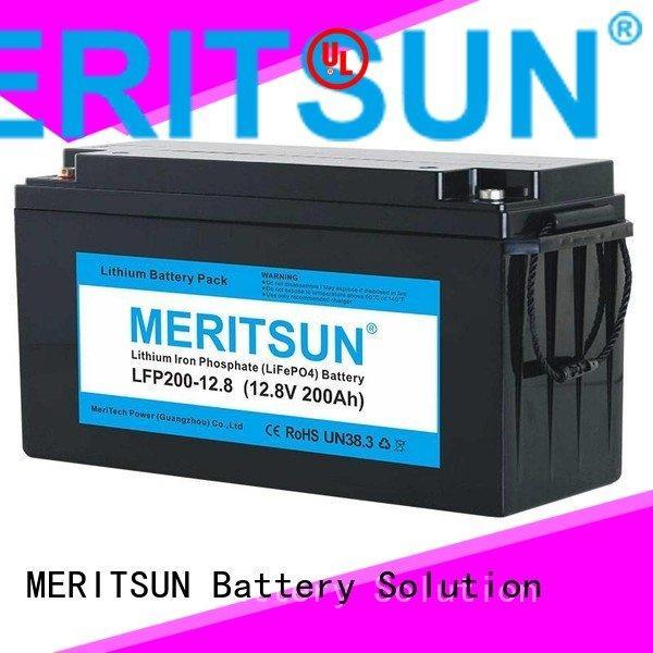 MERITSUN Brand control 24v ion lifepo4 battery price